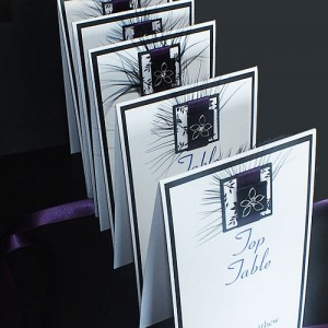 Eden Table Name or Number Cards