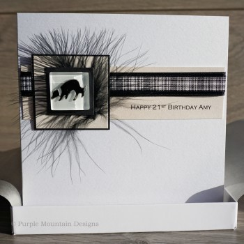 Border Collie Boxed Birthday Card